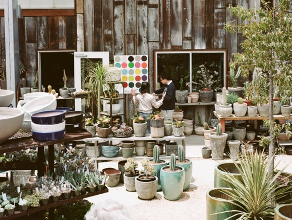 Flora Grubb Nursery: San Francisco's Coolest, Greenest Oasis San Francisco California United States