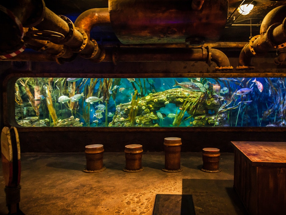 Under The Sea Durban  South Africa