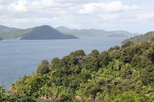 Queen Charlotte Sound (Totaranui)