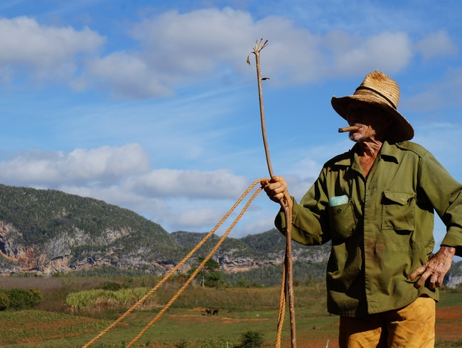 Farming, the Traditional Way, in the Cuban Countryside