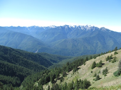 Hurricane Ridge Port Angeles Washington United States