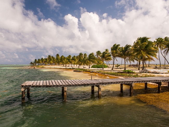 For a Day at Half Moon Caye
