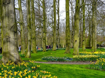 Keukenhof Eext  The Netherlands