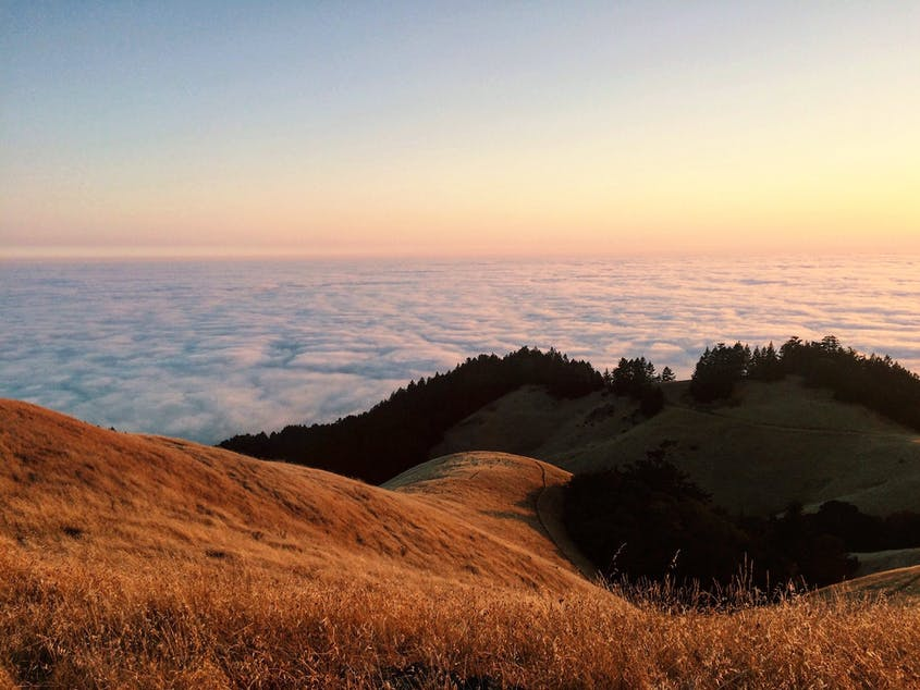 Why Mount Tamalpais in Marin County, California, Is My Happy Place