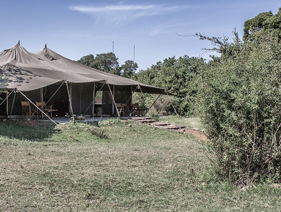 Porini Lion Camp Narok County  Kenya