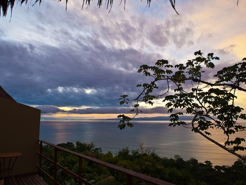 Call of the Wild: Unplugged in the Osa Peninsula Puerto Jiménez  Costa Rica