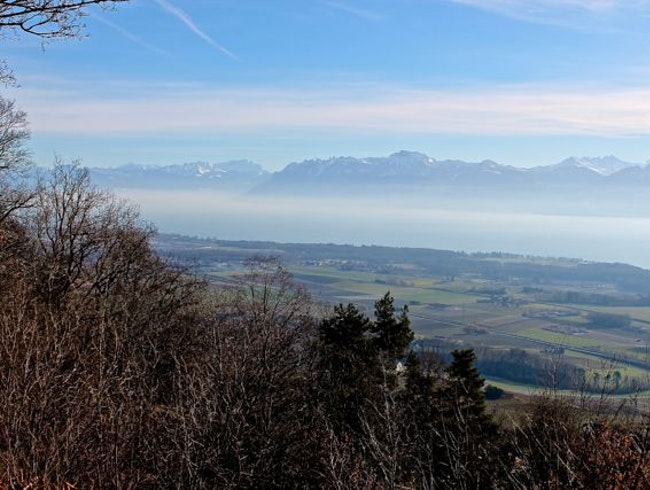 Wend your way up into the Jura for the best view in Vaud