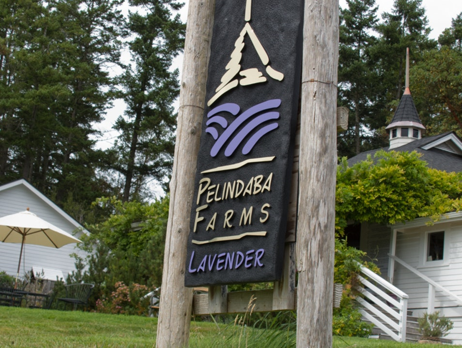 Pelindaba Farms: French Lavendar in the San Juan Islands Friday Harbor Washington United States