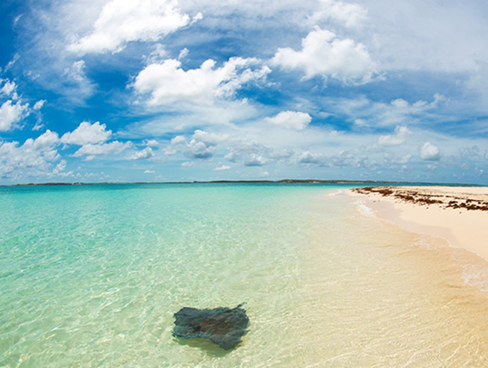 Gibbs Cay    Turks and Caicos Islands