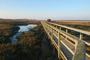 Newtown Harbour National Nature Reserve