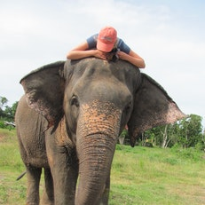 The Elephant Mahout Project