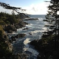 Pacific Rim National Park Reserve Ucluelet  Canada