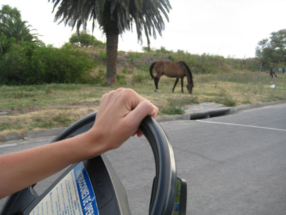 Exploring Uruguay With Your Own Set of Wheels