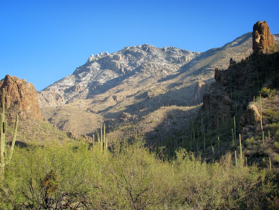 Ventana Canyon Wilderness