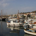 Spetses Nisi  Greece