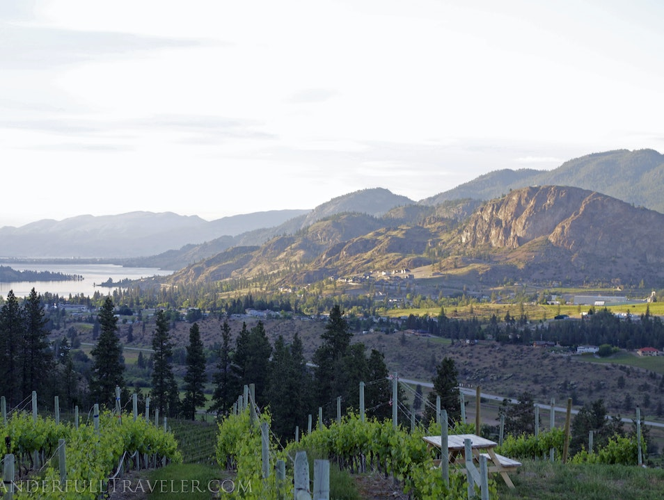 See Ya Later Ranch: The best winery origin story Okanagan Falls  Canada