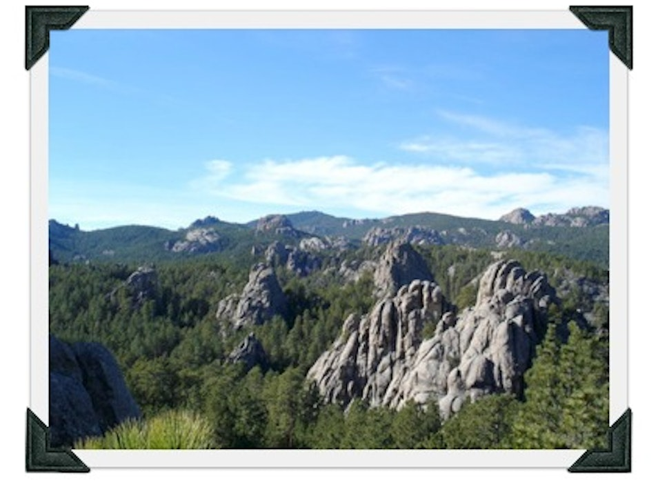 Summer Trip to the Black Hills & Custer State Park
