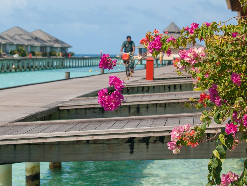 Retreating to the Maldives