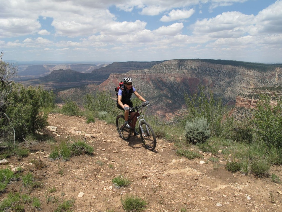 Grand Canyon Mountain Biking North Rim Arizona United States