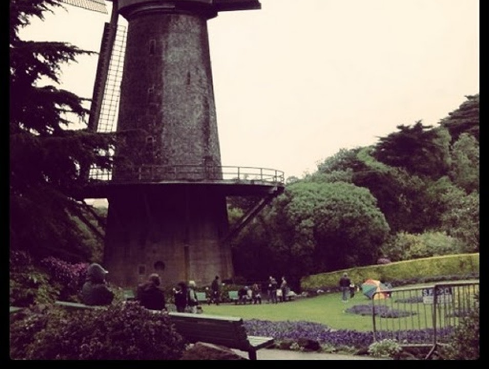 Windmill in Golden Gate Park San Francisco California United States