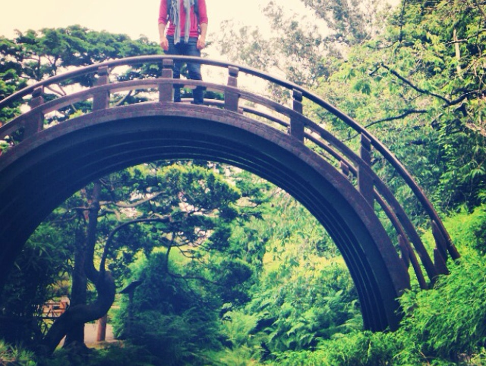 Drum Bridge in Japanese Tea Garden | San Francisco | United States ...