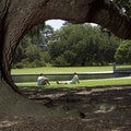 Hampton Park Charleston South Carolina United States