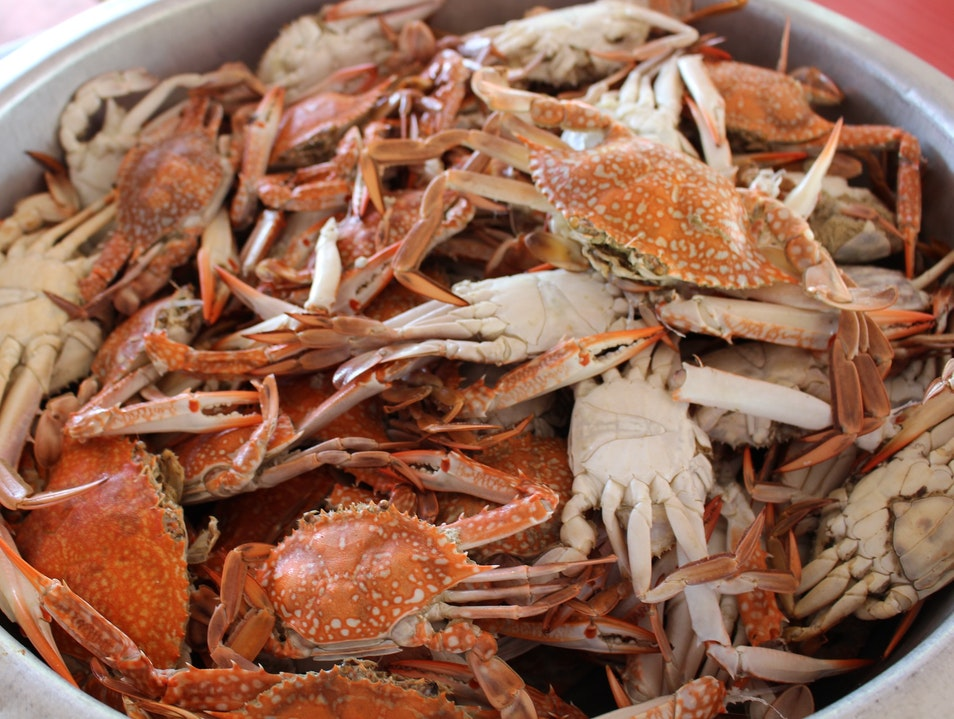 The Best Crab in the Virginia Tidewater Norfolk Virginia United States