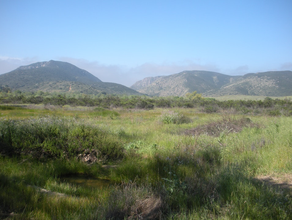 Great hiking, 8 miles from downtown San Diego