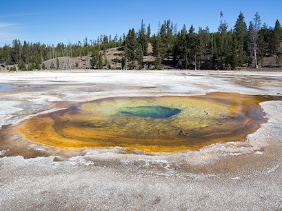 Upper Geyser Basin Yellowstone National Park Wyoming United States