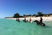 Horseback riding on Long Bay Beach Providenciales And West Caicos  Turks and Caicos Islands