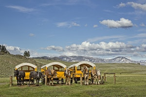 Roosevelt Lodge Chuckwagon