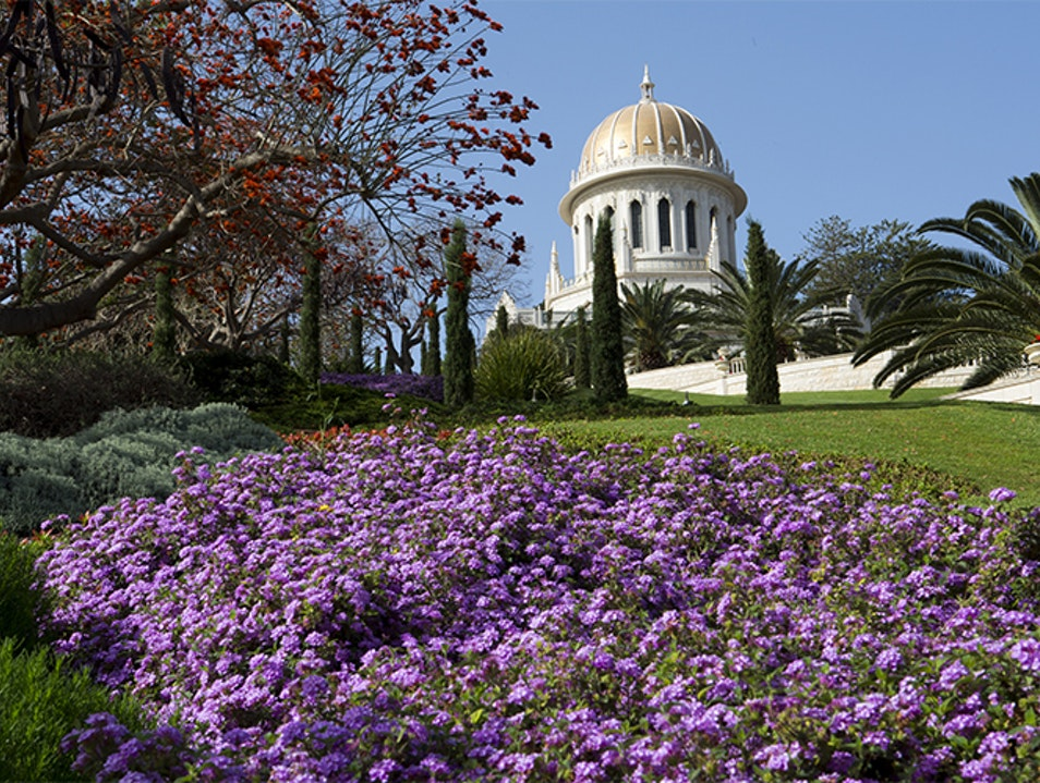 See the Most Beautiful Gardens in Israel Haifa  Israel