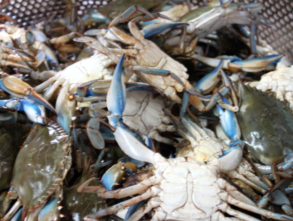 Freshest Seafood in Baton Rouge