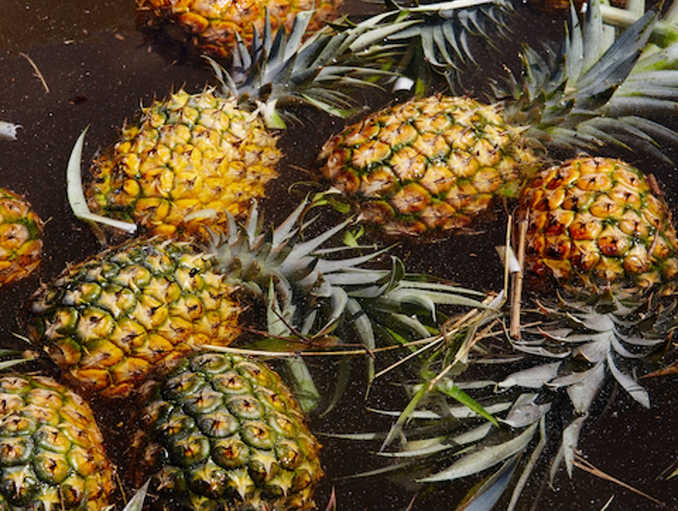 Maui Pineapple Tour Makawao Hawaii United States