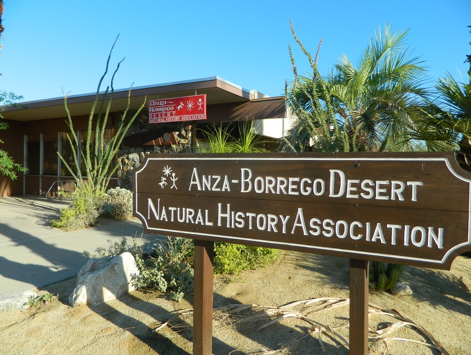 Learn about the Anza-Borrego Desert Borrego Springs California United States