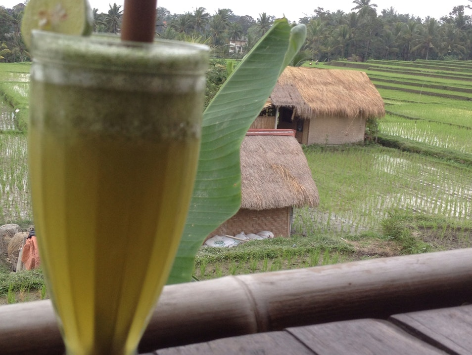 View of the Rice Fields Ubud  Indonesia