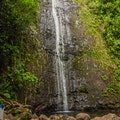 Manoa Falls Honolulu Hawaii United States