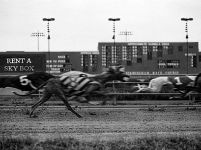 Birmingham Race Course Birmingham Alabama United States
