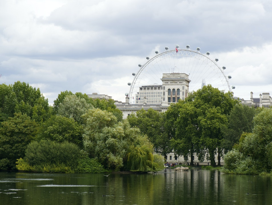 Take in the Royal Parks London  United Kingdom