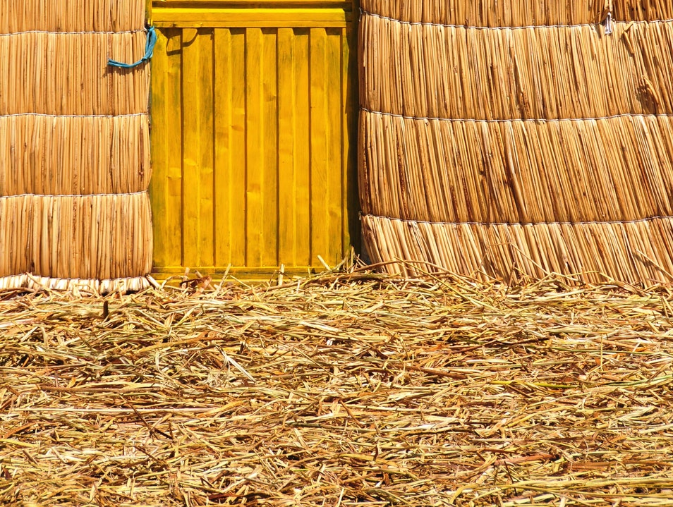 Sunny Yellow on the Uros Islands Puno  Peru