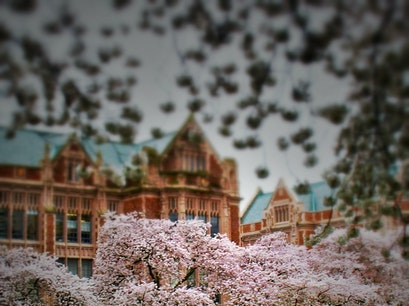 University of Washington Seattle Washington United States