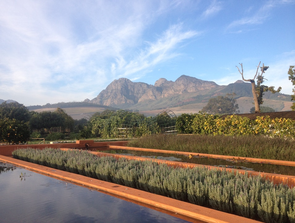 Garden, farm hotel, farm to table, luxury, South Africa, views, cuisine Paarl  South Africa