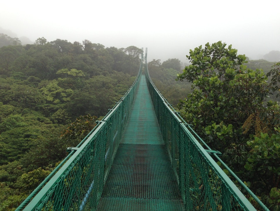 Hanging Bridges in Monteverde Puntarenas  Costa Rica