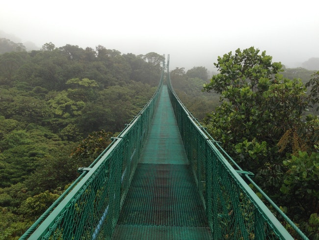 Hanging Bridges in Monteverde
