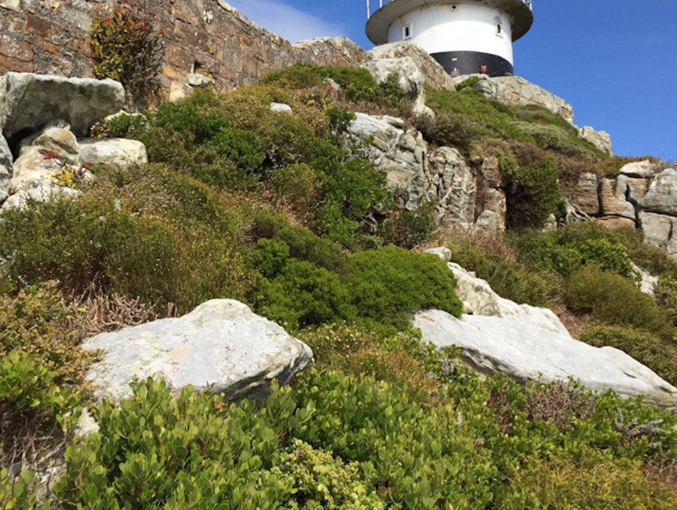 Cape Point Lighthouse - The Tip of Africa  Cape Town  South Africa