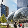 Amazon Spheres Seattle Washington United States