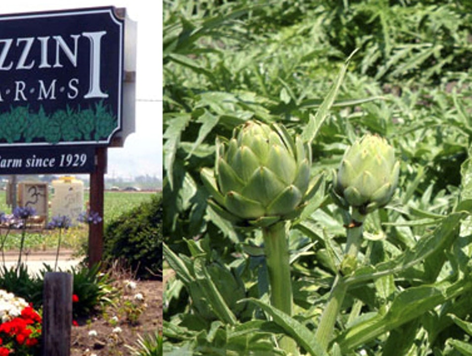 Artichoke Capital of the World Castroville California United States