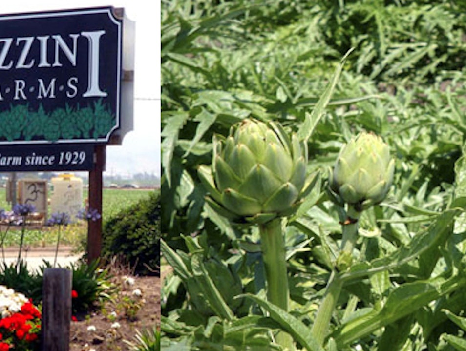 Artichoke Capital of the World