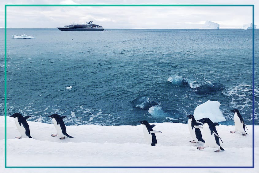 With the right gear in hand, you'll be as comfortable on the ice as an Adelie penguin.
