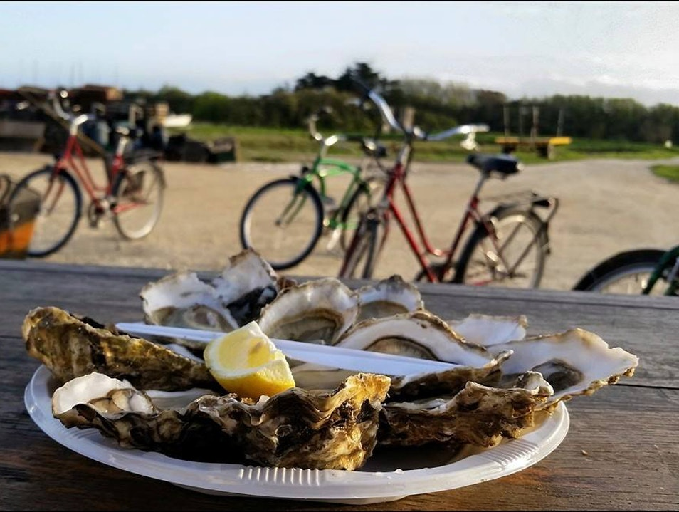 Oysters fresh from the water Île D'aix  France